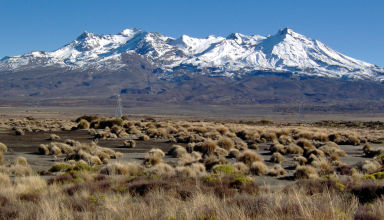 Juin 2008 - Aux environs de Taupo en Nouvelle-Zélande.